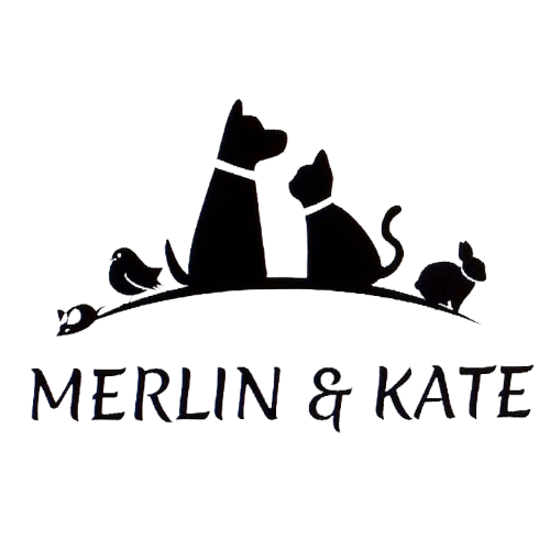 merlinandkate